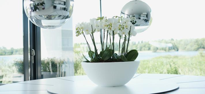 Ehlo Pure bloempotten en plantenbakken kopen in Wageningen