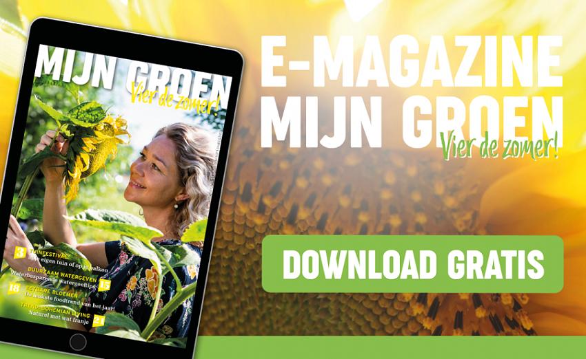 E-Magazine Mijn Groen Tuincentrum Interflower