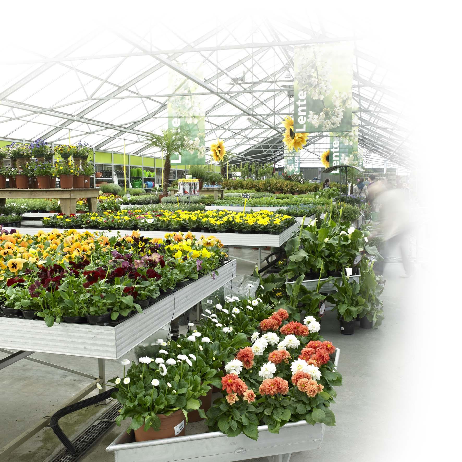 Kom naar ons tuincentrum in de buurt van Sint Niklaas voor een compleet huis en tuin assortiment! Tuincentrum Interflower heeft het allemaal