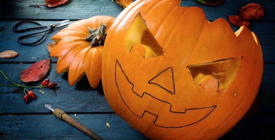 Halloween_Tuincentrum Interflower