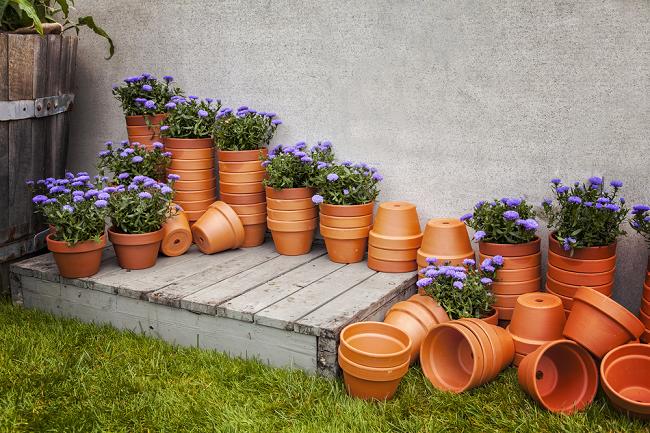 Potterie bij Tuincentrum Interflower
