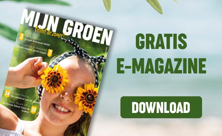 Download e-magazine gratis