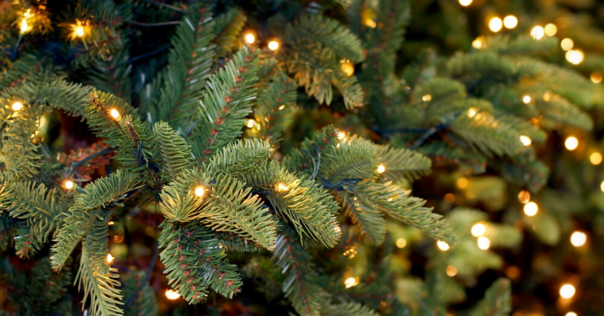 Kerstboom-versieren-Interflower
