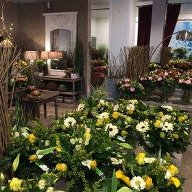 Ontdek het assortiment bloemen en planten van Interflower nabij Gent